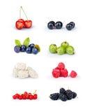 Various berries Stock Images