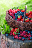 Various berry fruits in basket Stock Photo