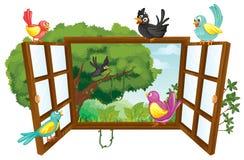 Various birds Royalty Free Stock Photo