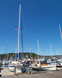 Various boats tied up in marina with blue sky. Sailboat and motor boat tied up in marina Stock Photography