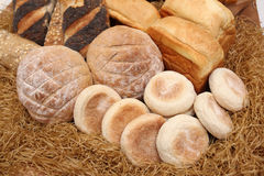 Various of breads Stock Images