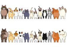 Cats border set. Various breed cats border set, from front view and rear view royalty free illustration