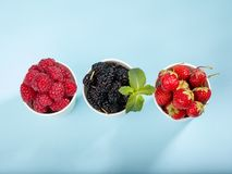 Berries in paper cups Royalty Free Stock Photography