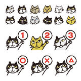 Various cat's, face, ranking, illustration Royalty Free Stock Image