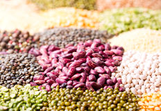 Various cereals, seeds, beans and grains Stock Images