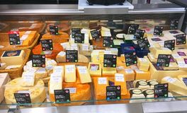 Various cheese in a store display. Stock Photography