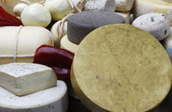Various cheeses on display Royalty Free Stock Photography