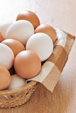 Various chicken eggs Stock Images