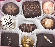 Various chocolate pralines Stock Photo