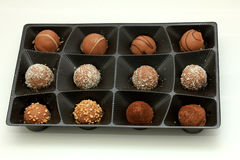 Various chocolates in a tray Royalty Free Stock Images