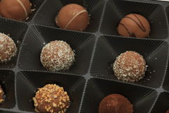 Various chocolates in a tray Royalty Free Stock Photography