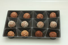Various chocolates in a tray Stock Images