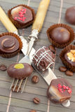 Various chocolates and truffles Royalty Free Stock Photography