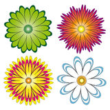 Various choices of flowers. There is a vector version Stock Photography