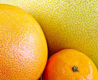 closeup of citrus fruit Royalty Free Stock Photos
