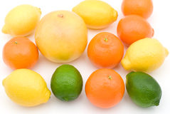 Various citrus fruits Stock Image