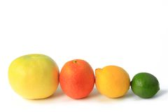 Various citrus fruits Royalty Free Stock Photo