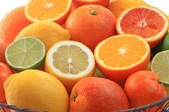 Various citrus fruits Stock Images