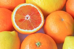 Various citrus fruits Royalty Free Stock Images
