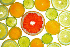 Various citrus slices. Background of some various colorful citrus slices Stock Images