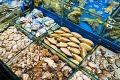 Various clams in fish market in Guangzhou city Stock Photo