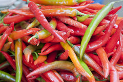 Various Color Chili Peppers Royalty Free Stock Photos