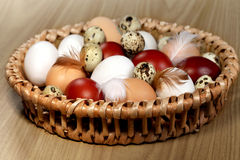Various color eggs Stock Photo