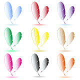 Various color feathers symbols with shadow Stock Photography