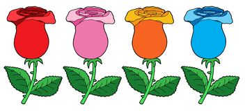 Various color roses collection. Vector illustration Royalty Free Stock Images