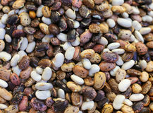 Various colored beans on farmers market as background Royalty Free Stock Photography