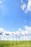 Various colored pinwheels Royalty Free Stock Images