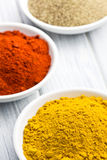 Various colored spices Royalty Free Stock Images