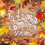 Various colorful autumn leaves and text lettering Autumn coming soon on aged rustic wooden. Background royalty free stock images