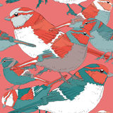 Various colorful birds seamless pattern. Vector illustration on light red background. Birds with turquoise, blue, red and white fe. Hand drawn colorful birds stock illustration