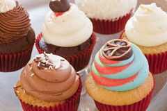 Various colorful cupcakes Royalty Free Stock Photos