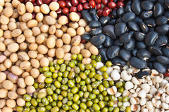 Various colorful dried legumes beans Stock Image