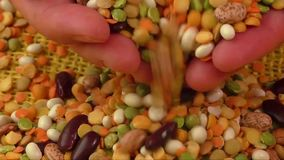 Various colorful dried legumes on a yellow background stock footage