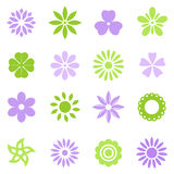 Various colorful flowers Royalty Free Stock Photos