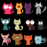 Various colorful funny cats Stock Photo