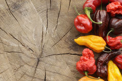 Various colorful hot peppers Royalty Free Stock Photos