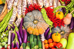 Various colorful raw vegetables Royalty Free Stock Images