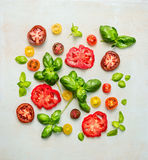 Various of colorful sliced tomatoes with basil leaves Stock Photography