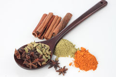 Various colorful spice Stock Image
