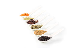 Various colorful spice. With white spoon Royalty Free Stock Image