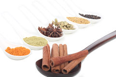 Various colorful spice royalty free stock photography
