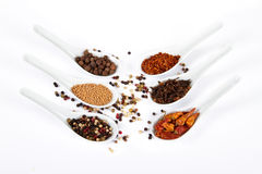 Various colorful spices Stock Photo