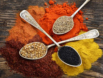 Various colorful spices on a wooden Royalty Free Stock Photo