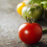 Various of colorful tomatoes Stock Photos