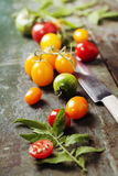 Various of colorful tomatoes Royalty Free Stock Photography