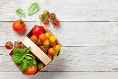 Various colorful tomatoes Royalty Free Stock Photos